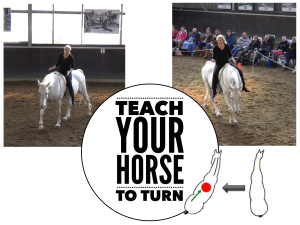 teach-your-horse-to-turn