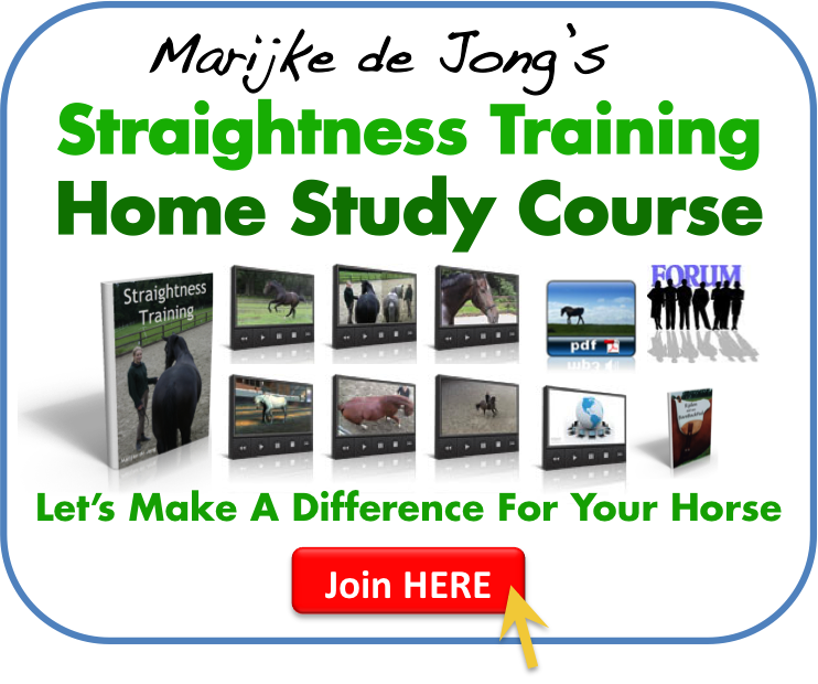 Straightness Training Home Study Course