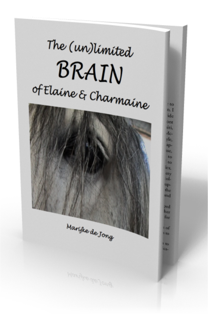 eBook-brain