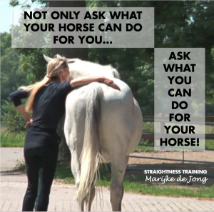 ask-what-you-can-do-for-your-horse