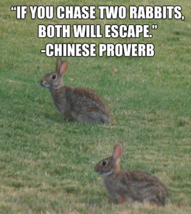 chinese-proverb-if-you-chase-two-rabbits-quote-guyism