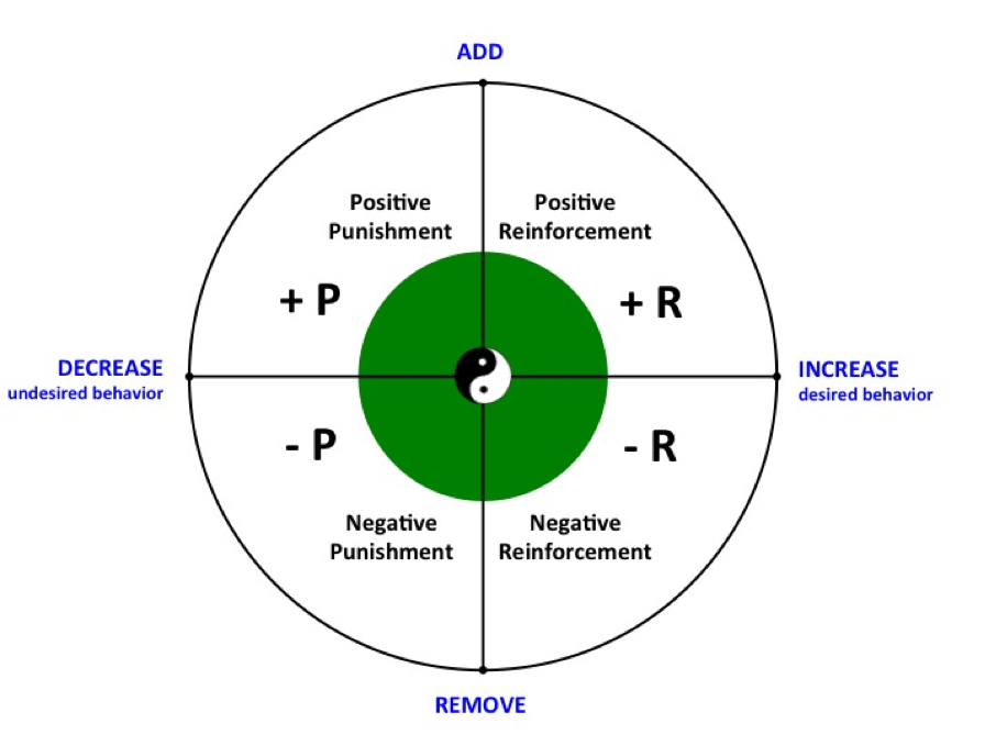 Balanced motivation quadrant