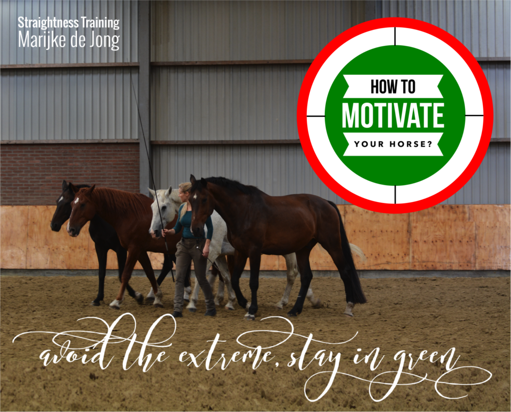 how-to-motivate-your-horse