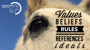 values-beliefs-rules-references-ideals